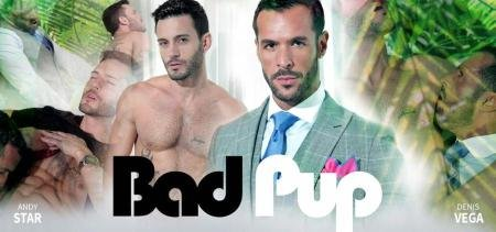 Andy Star & Denis Vega - Bad Pup (14 January 2018) [FullHD 1080p]