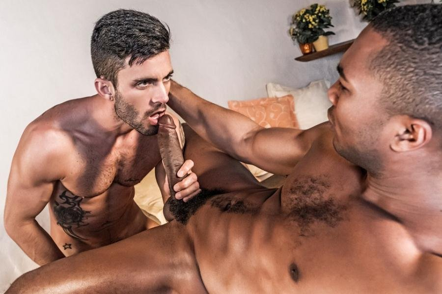 Sean Xavier, Andy Star - LVP264-02 (5 February 2018) [HD 720p]
